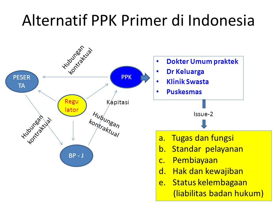 Alternatif PPK Primer di Indonesia