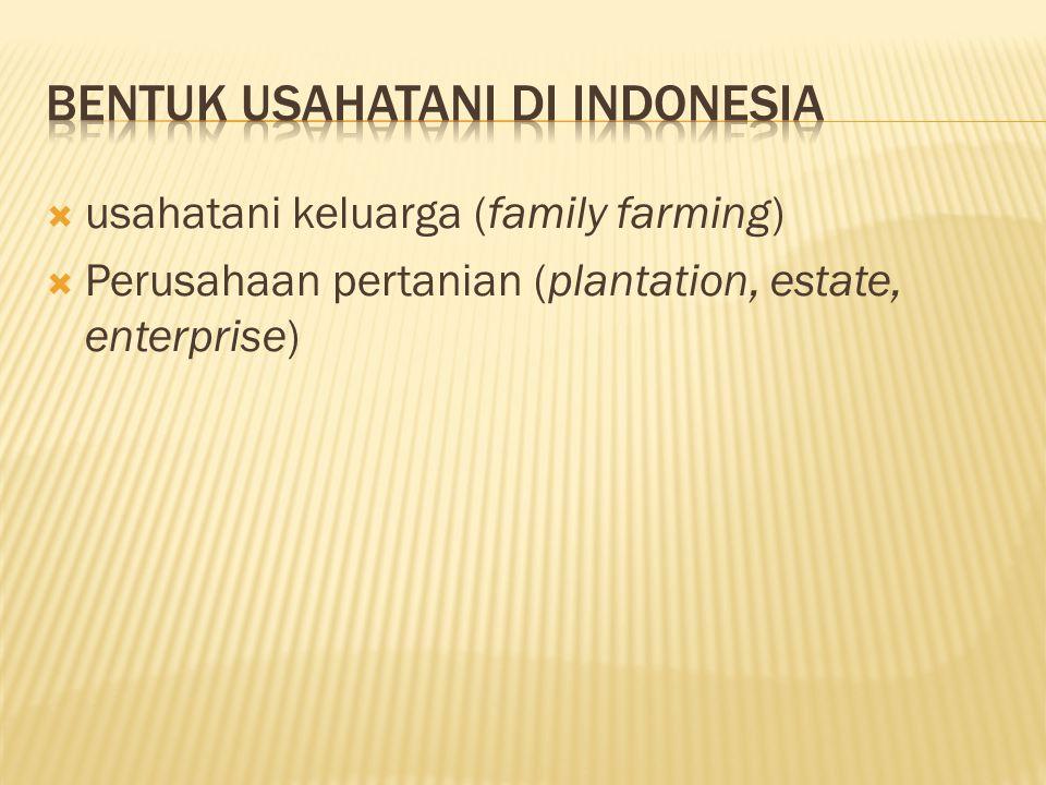 Bentuk usahatani di indonesia