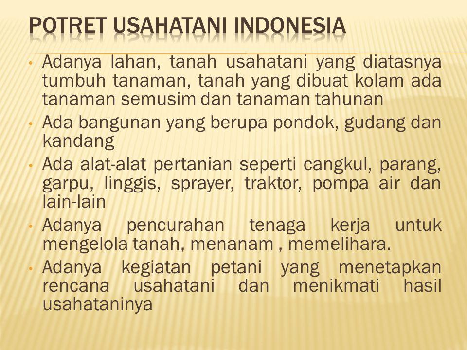 POTRET USAHATANI INDONESIA