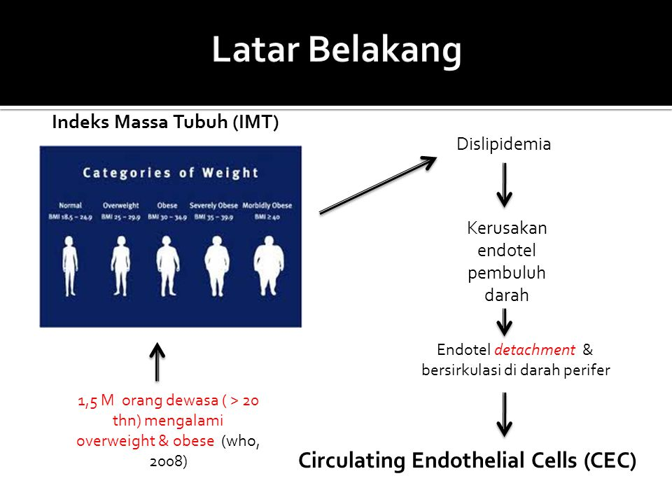 Latar Belakang Circulating Endothelial Cells (CEC)