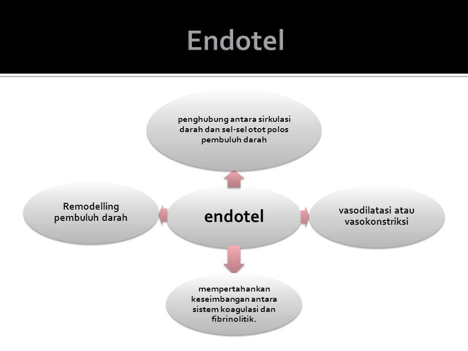 Endotel endotel vasodilatasi atau vasokonstriksi