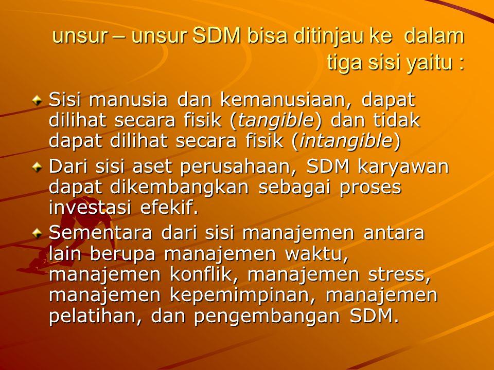 unsur – unsur SDM bisa ditinjau ke dalam tiga sisi yaitu :