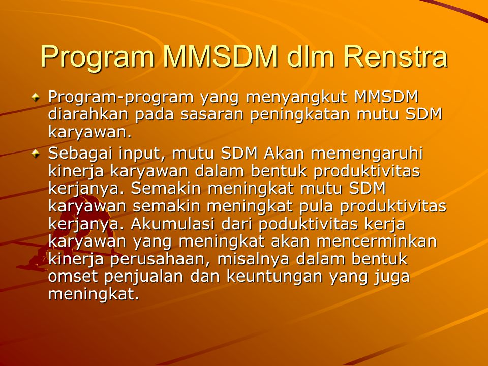 Program MMSDM dlm Renstra