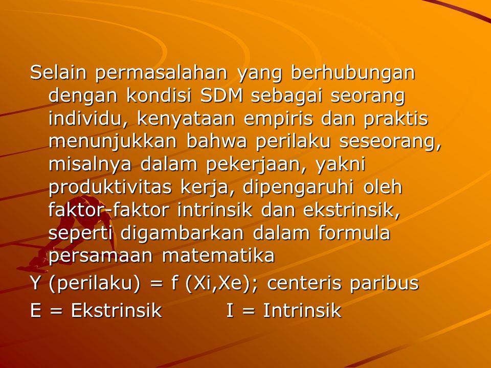Selain permasalahan yang berhubungan dengan kondisi SDM sebagai seorang individu, kenyataan empiris dan praktis menunjukkan bahwa perilaku seseorang, misalnya dalam pekerjaan, yakni produktivitas kerja, dipengaruhi oleh faktor-faktor intrinsik dan ekstrinsik, seperti digambarkan dalam formula persamaan matematika