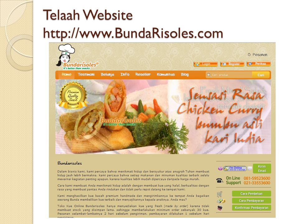 Telaah Website