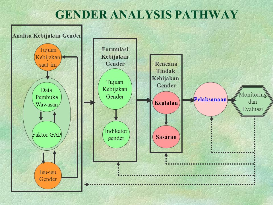 GENDER ANALYSIS PATHWAY