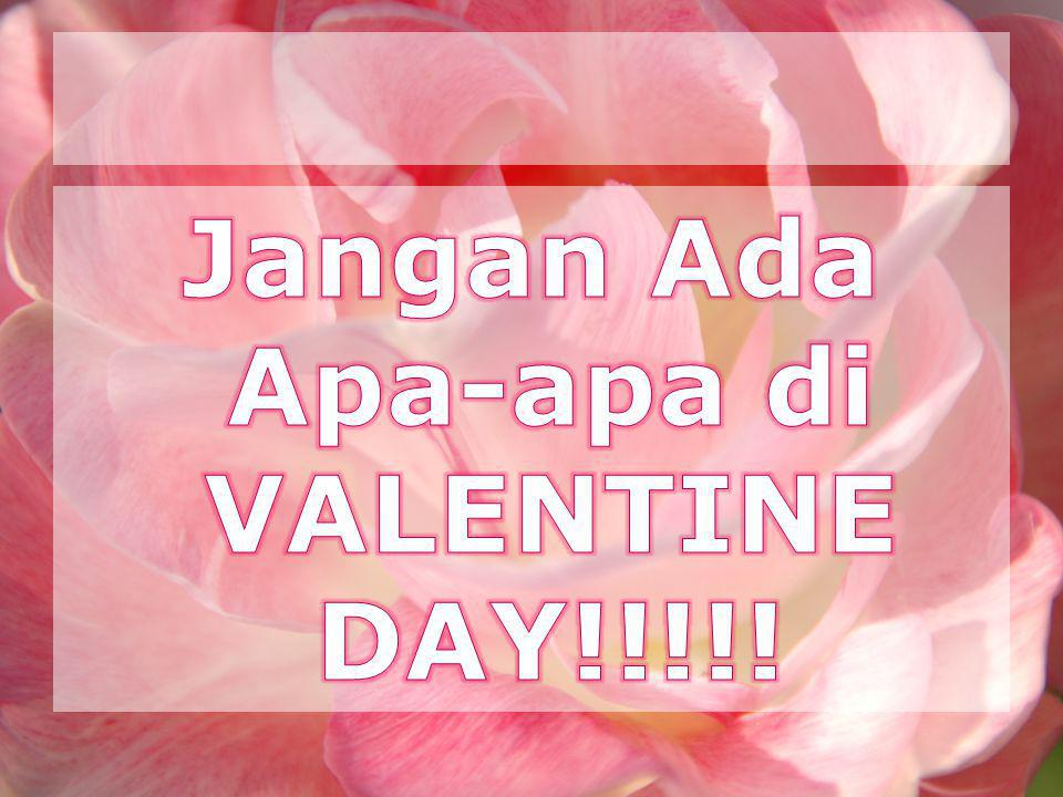 Jangan Ada Apa-apa di VALENTINE DAY!!!!!
