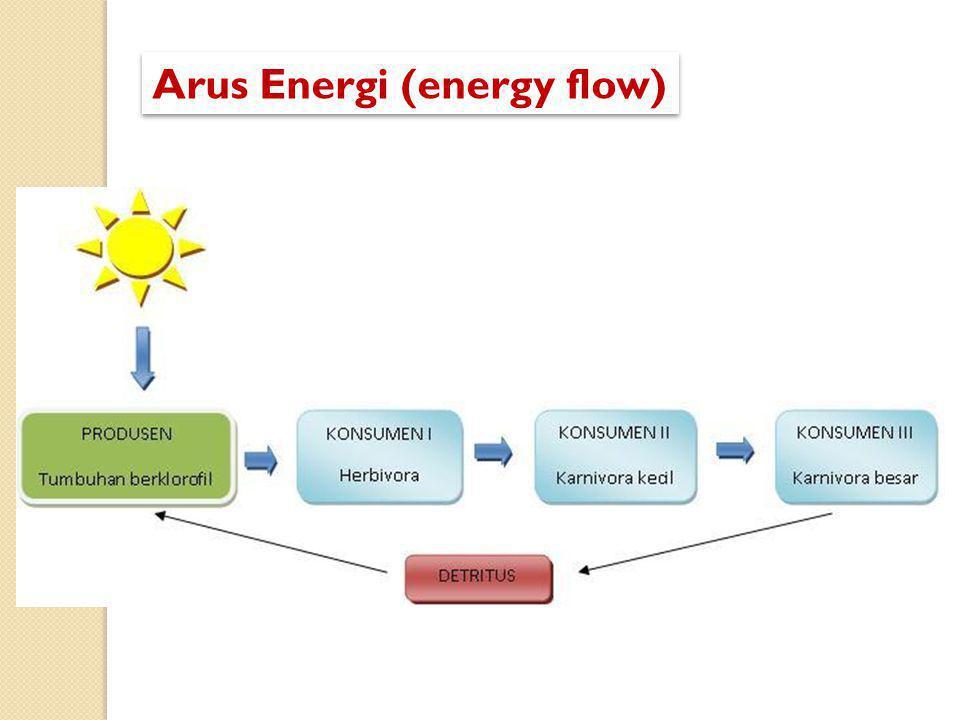 Arus Energi (energy flow)