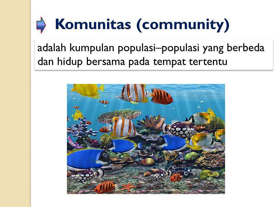 Komunitas (community)