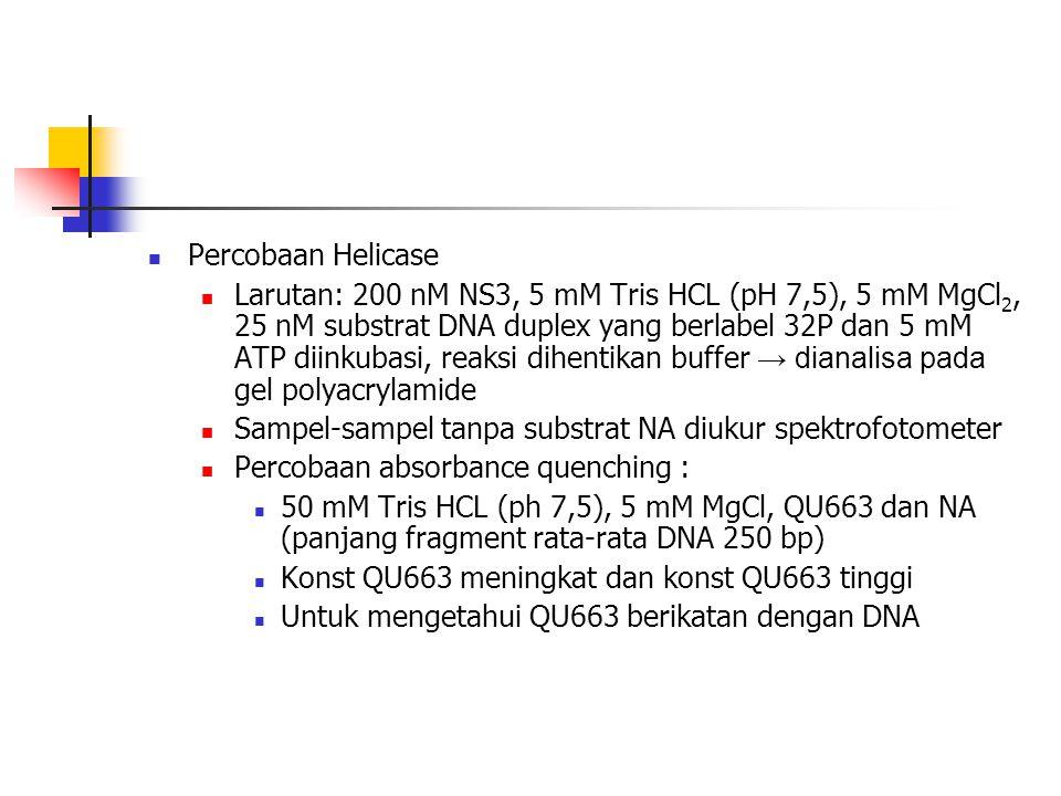 Percobaan Helicase