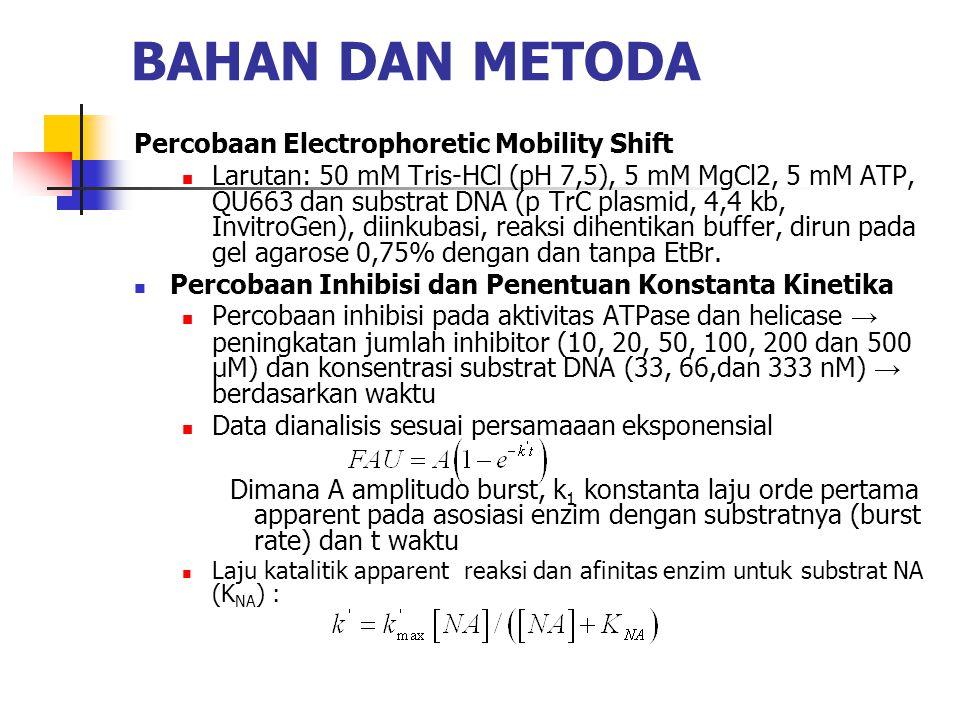 BAHAN DAN METODA Percobaan Electrophoretic Mobility Shift