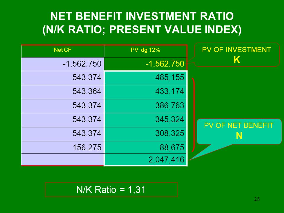 NET BENEFIT INVESTMENT RATIO (N/K RATIO; PRESENT VALUE INDEX)