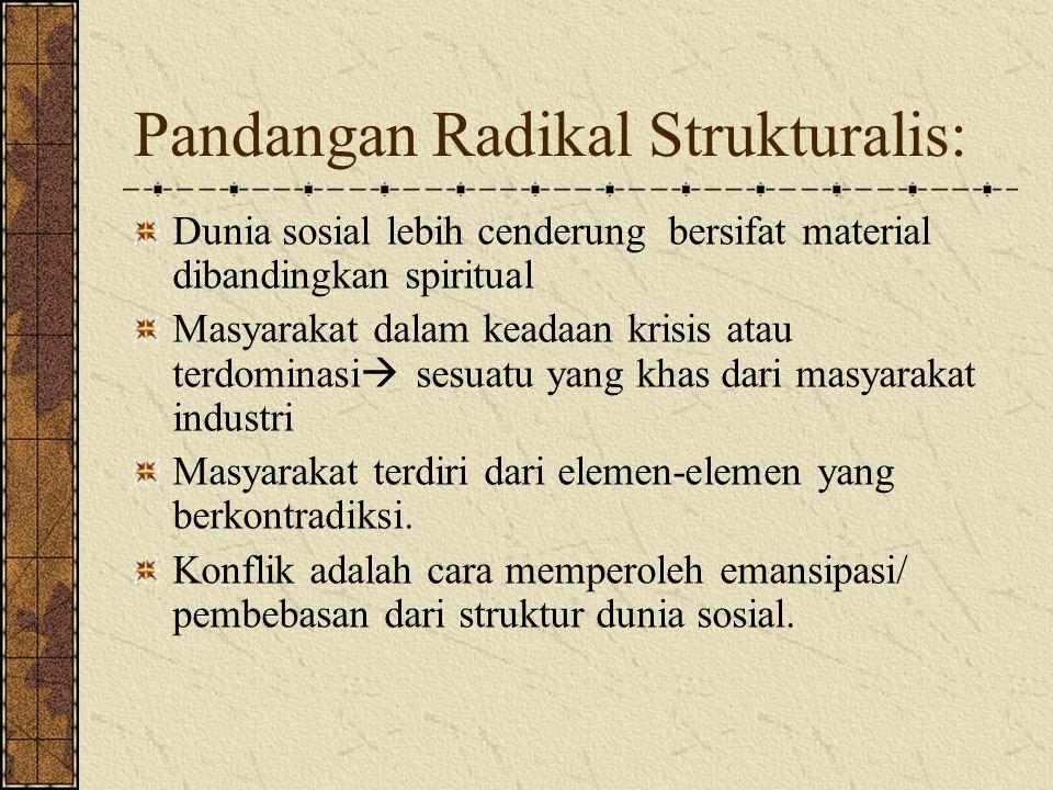 Pandangan Radikal Strukturalis: