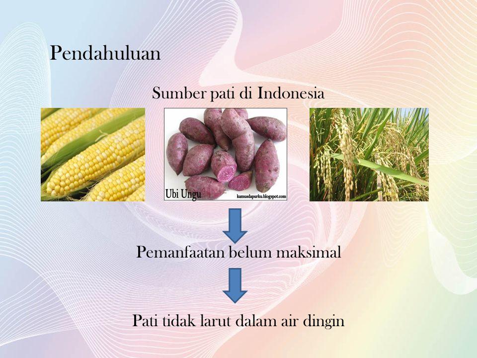 Pendahuluan Sumber pati di Indonesia Pemanfaatan belum maksimal Pati tidak larut dalam air dingin
