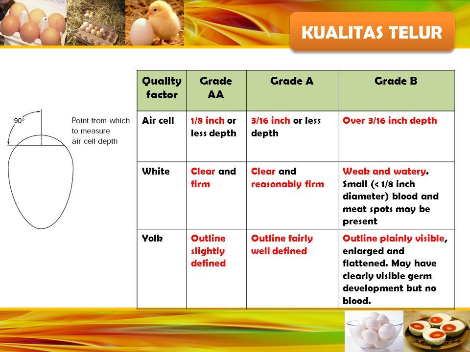 KUALITAS TELUR Quality factor Grade AA Grade A Grade B Air cell