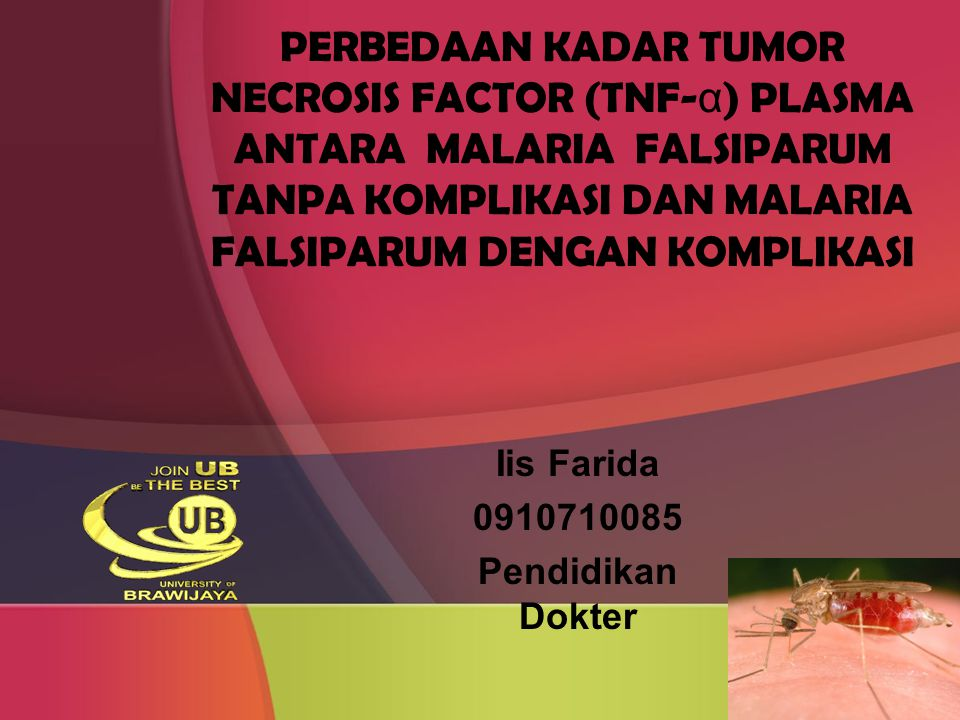 PERBEDAAN KADAR TUMOR NECROSIS FACTOR (TNF-α) PLASMA ANTARA MALARIA FALSIPARUM TANPA KOMPLIKASI DAN MALARIA FALSIPARUM DENGAN KOMPLIKASI