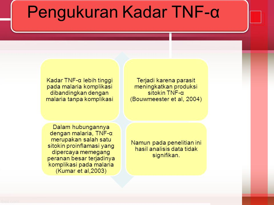 Pengukuran Kadar TNF-α