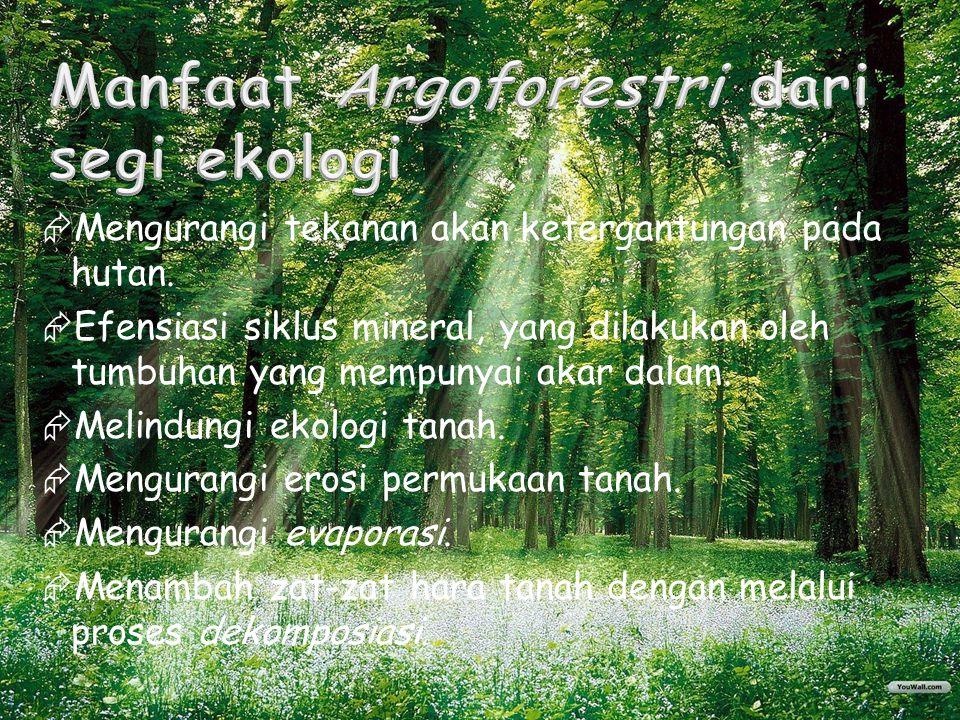 Manfaat Argoforestri dari segi ekologi