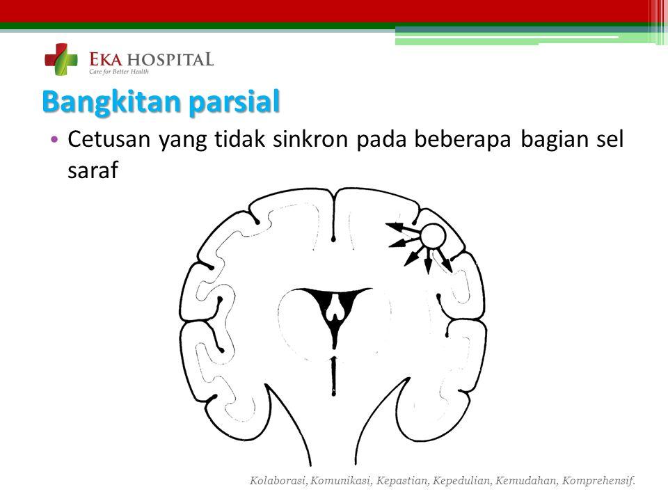 Bangkitan parsial Cetusan yang tidak sinkron pada beberapa bagian sel saraf