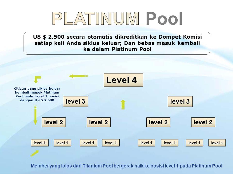 PLATINUM Pool Level 4 level 3 level 3 level 2 level 2 level 2 level 2