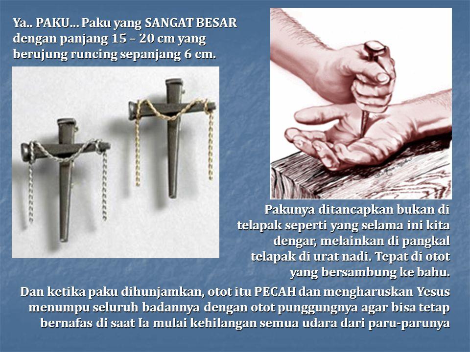 Ya.. PAKU… Paku yang SANGAT BESAR dengan panjang 15 – 20 cm yang berujung runcing sepanjang 6 cm.