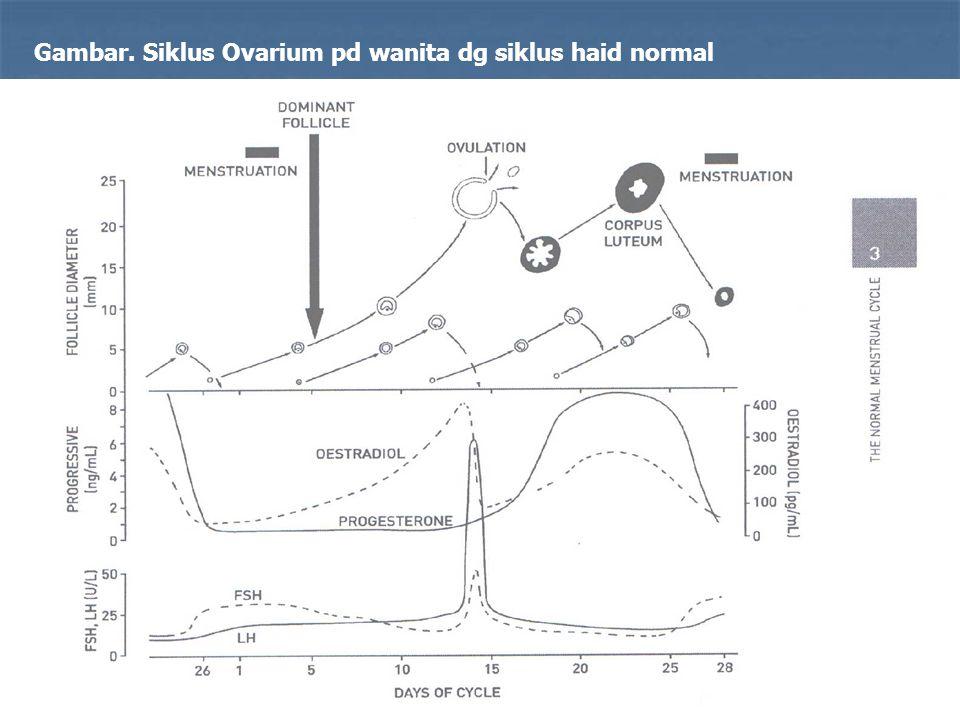 Gambar. Siklus Ovarium pd wanita dg siklus haid normal
