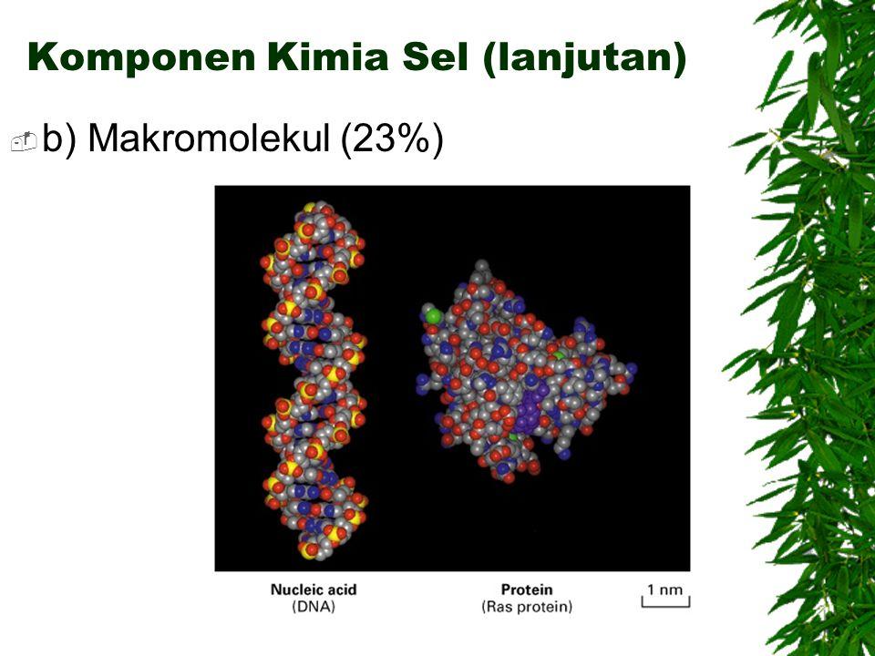 Komponen Kimia Sel (lanjutan)