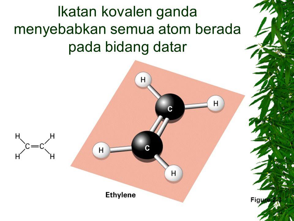 Ikatan kovalen ganda menyebabkan semua atom berada pada bidang datar