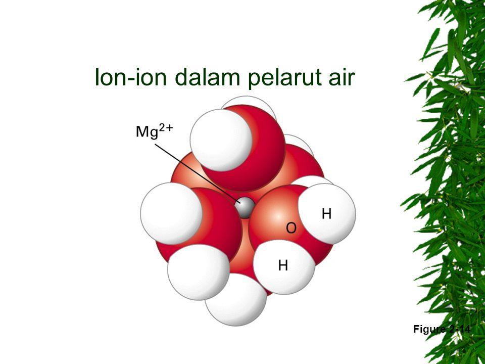 Ion-ion dalam pelarut air