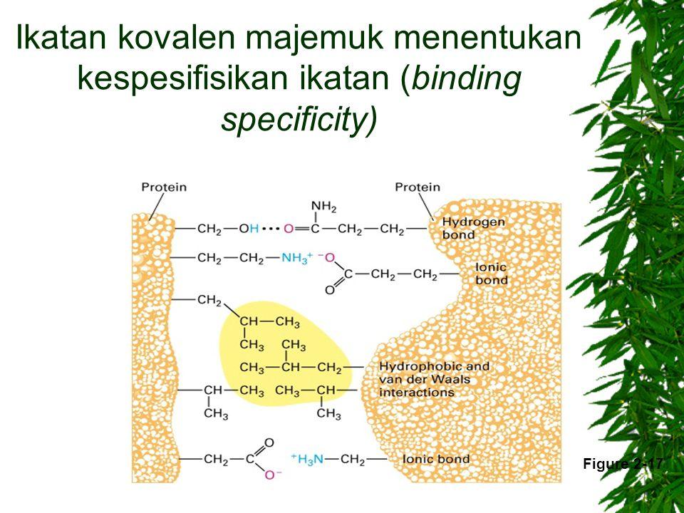 Ikatan kovalen majemuk menentukan kespesifisikan ikatan (binding specificity)