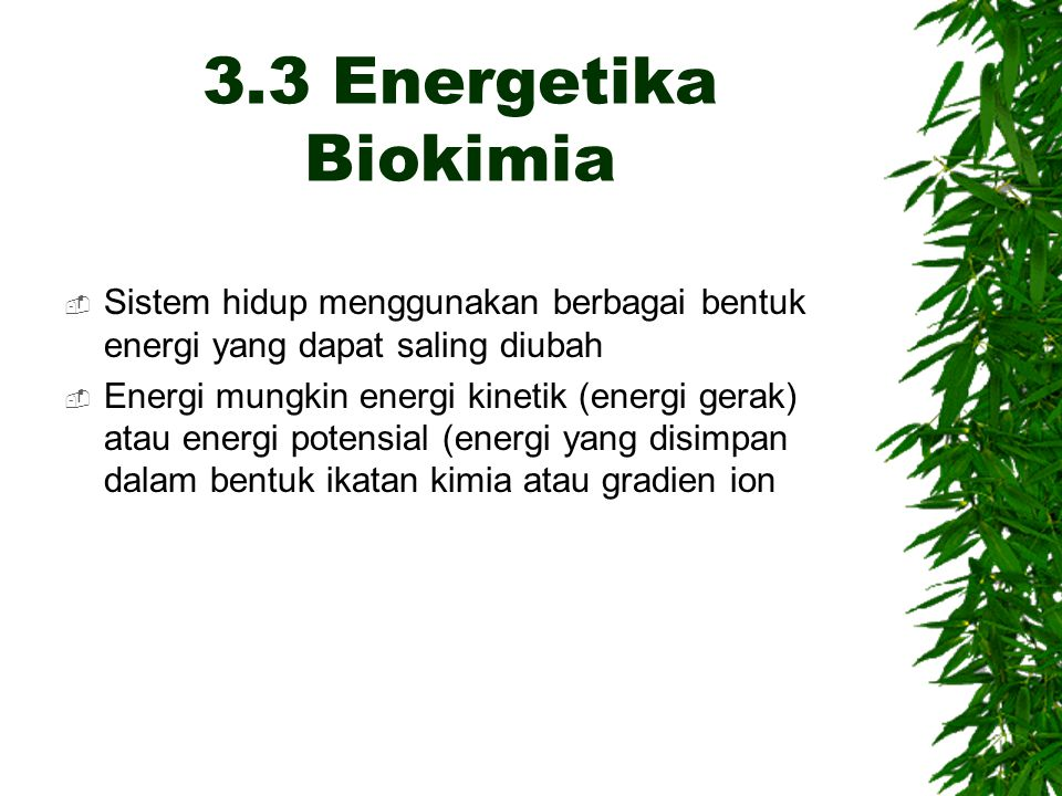3.3 Energetika Biokimia Sistem hidup menggunakan berbagai bentuk energi yang dapat saling diubah.