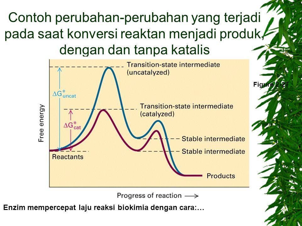 Contoh perubahan-perubahan yang terjadi pada saat konversi reaktan menjadi produk, dengan dan tanpa katalis