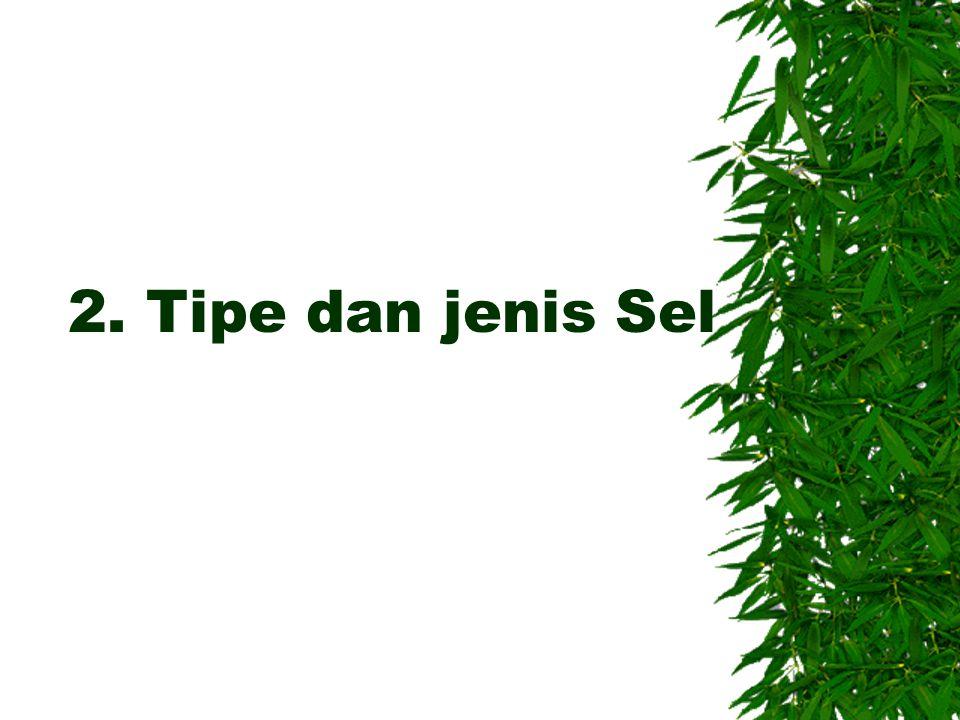 2. Tipe dan jenis Sel