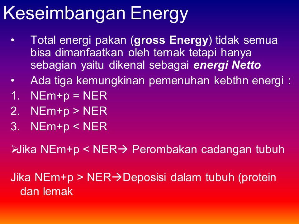 Keseimbangan Energy
