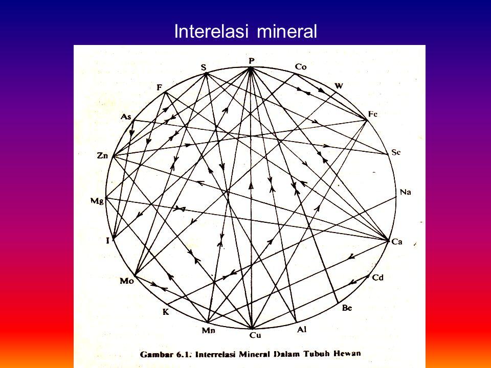 Interelasi mineral