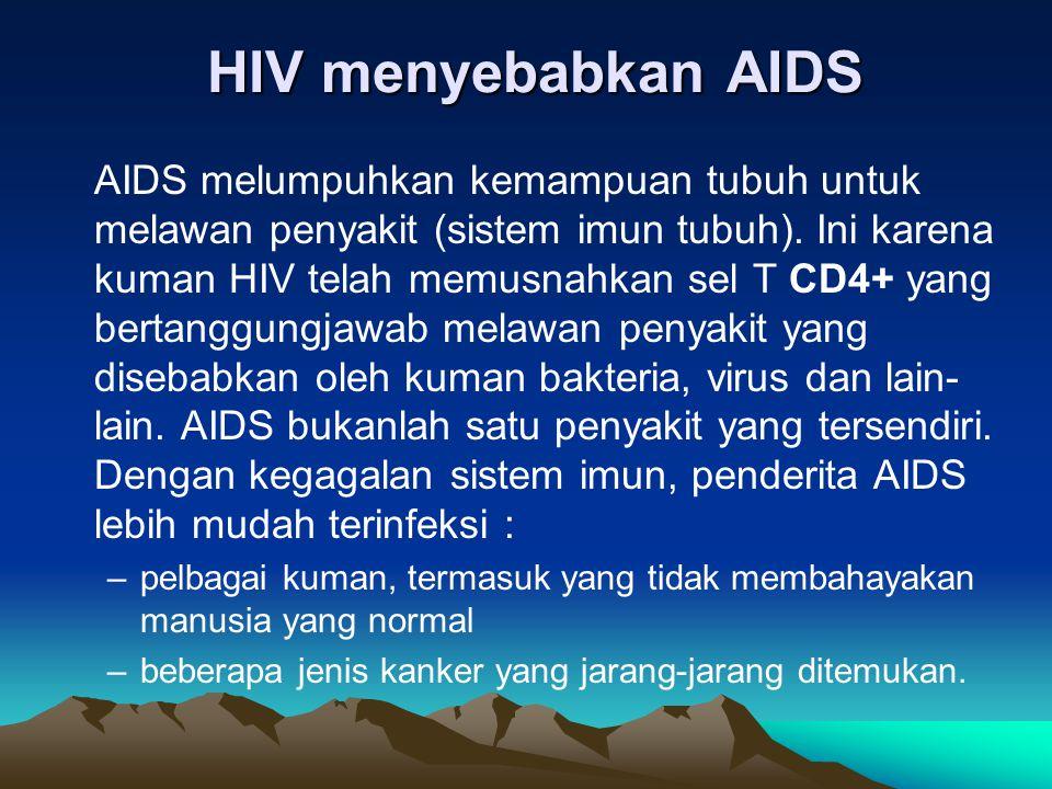 HIV menyebabkan AIDS