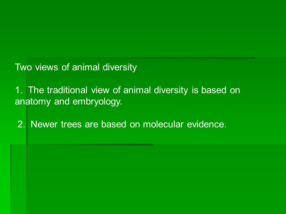 Two views of animal diversity
