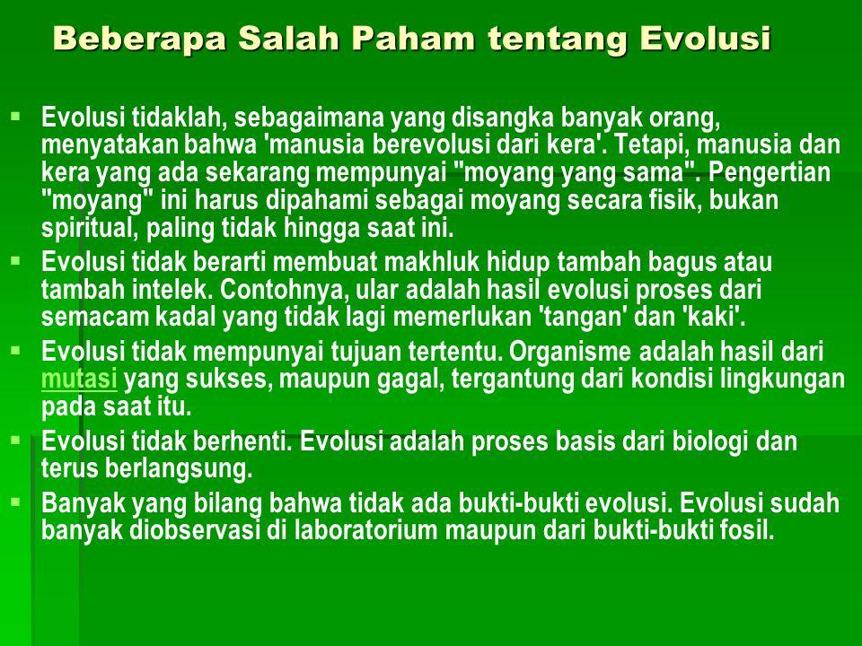 Beberapa Salah Paham tentang Evolusi