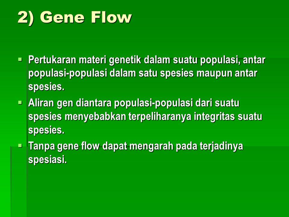2) Gene Flow Pertukaran materi genetik dalam suatu populasi, antar populasi-populasi dalam satu spesies maupun antar spesies.
