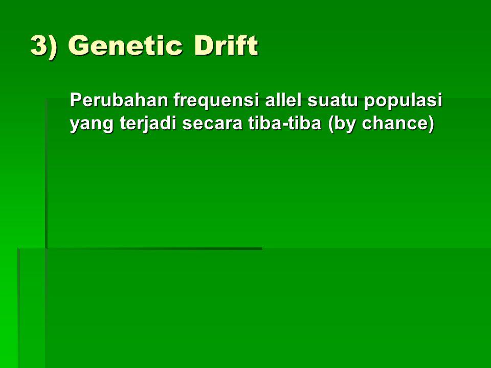 3) Genetic Drift Perubahan frequensi allel suatu populasi