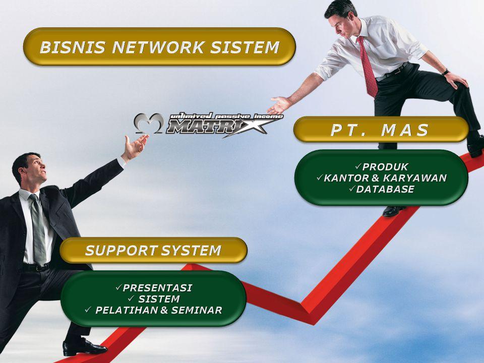 BISNIS NETWORK SISTEM PT. MAS