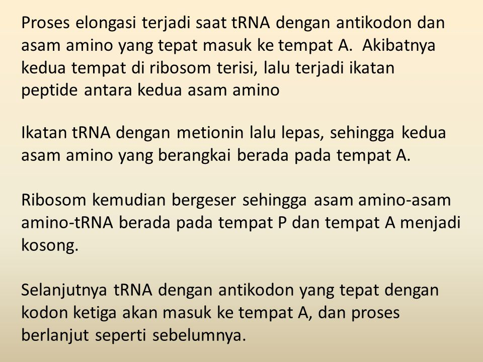 Proses elongasi terjadi saat tRNA dengan antikodon dan asam amino yang tepat masuk ke tempat A. Akibatnya kedua tempat di ribosom terisi, lalu terjadi ikatan peptide antara kedua asam amino