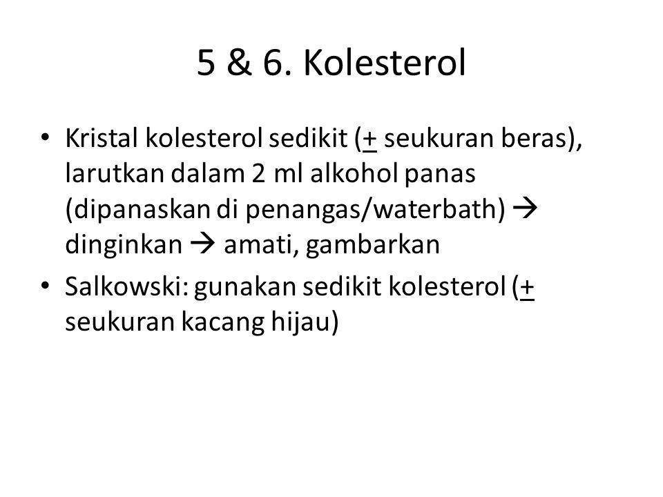 5 & 6. Kolesterol