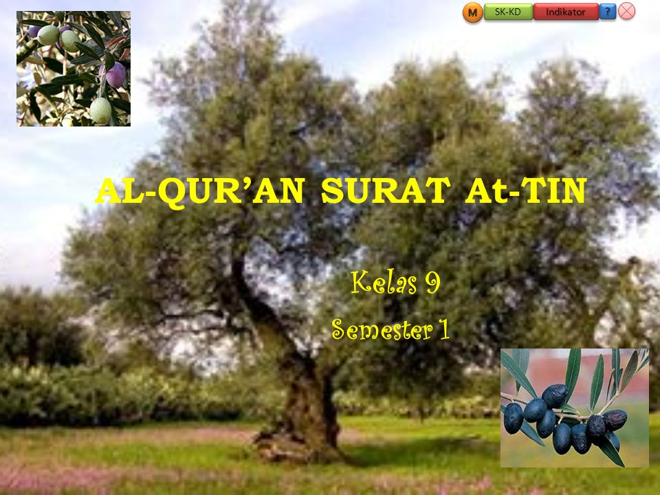 AL-QUR'AN SURAT At-TIN