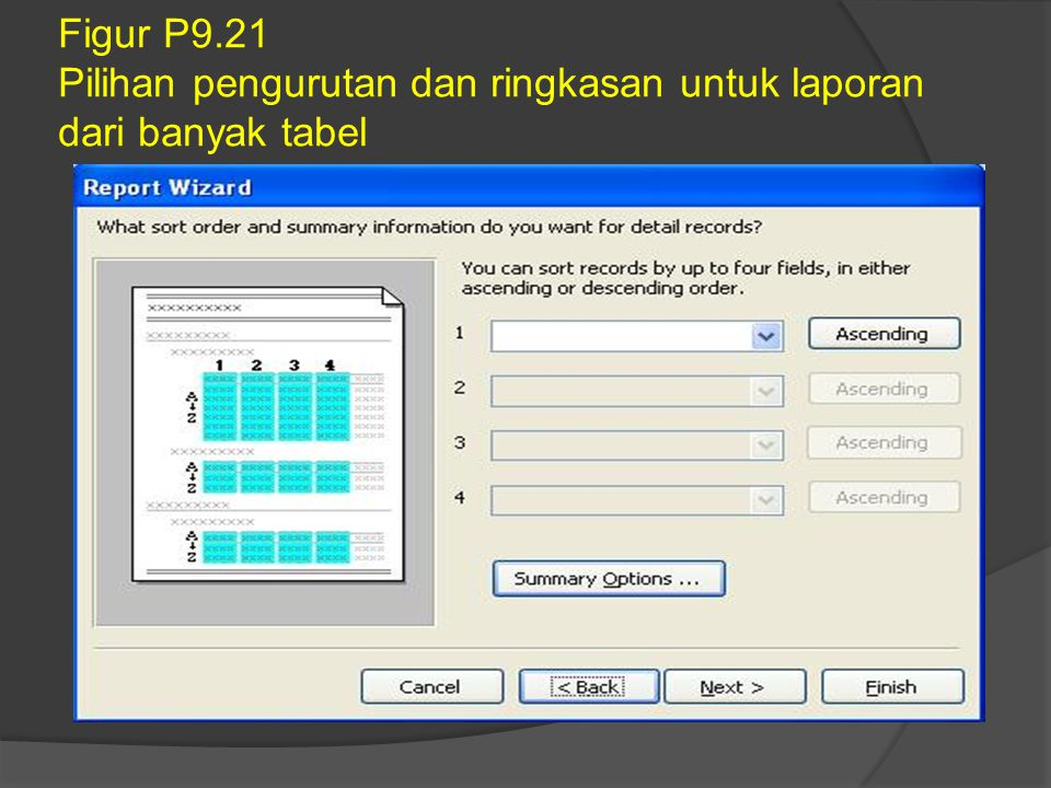 Figur P9.21 Pilihan pengurutan dan ringkasan untuk laporan dari banyak tabel