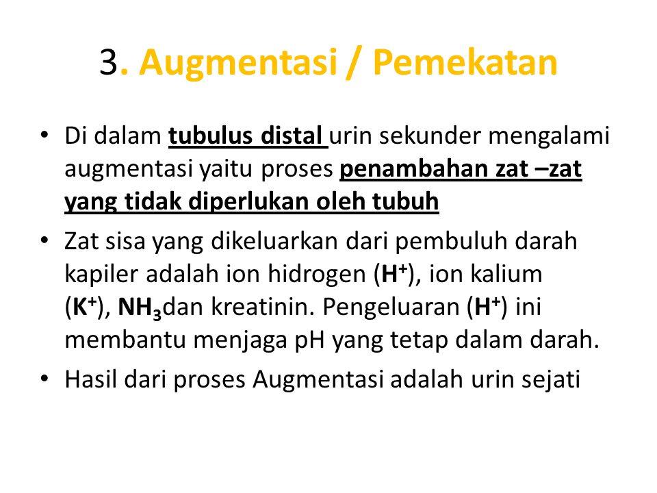 3. Augmentasi / Pemekatan
