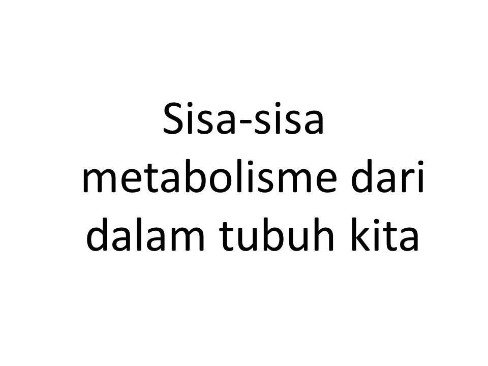 Sisa-sisa metabolisme dari dalam tubuh kita