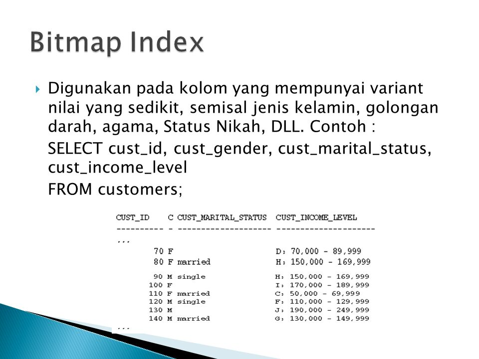 Bitmap Index