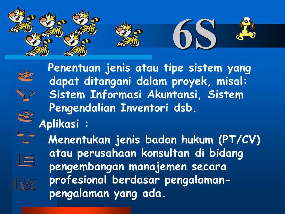 6S Penentuan jenis atau tipe sistem yang dapat ditangani dalam proyek, misal: Sistem Informasi Akuntansi, Sistem Pengendalian Inventori dsb.