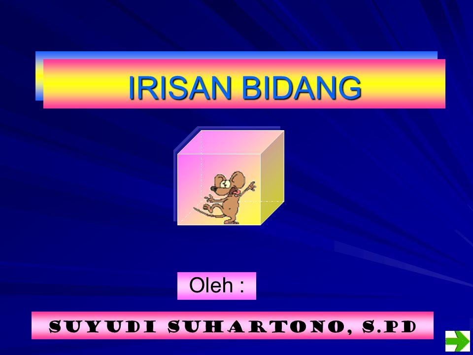IRISAN BIDANG Oleh : Suyudi Suhartono, S.Pd